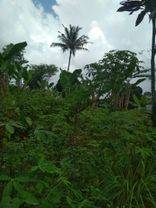 Tanah Strategis Tangerang