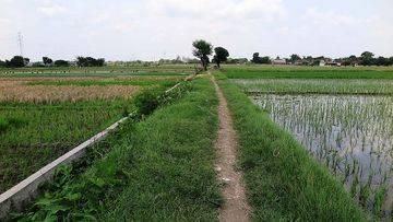 Tanah Luas di Desa Sroyo - Karang Anyar NPL367-1