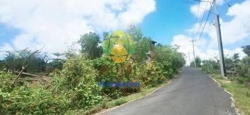 Tanah Bali siap bangun luas 10 Are
