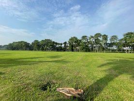 Tanah Kavling Badan Bentuk Kotak Depan Country Club Bukit Golf BSD (BEST LOCATION BOULEVARD ROAD)