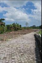 Tanah kavling Murah lokasi strategis, 5 menit ke pantai pererenan
