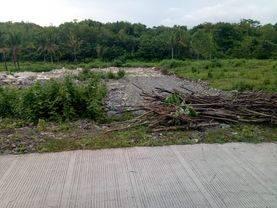 Tanah Murah Cocok Perumahan/Kavlingan dkt Bukit Bibis & Kasongan