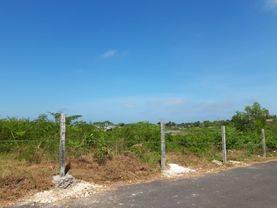 Tanah Pemukiman Gayang Sari Kutuh