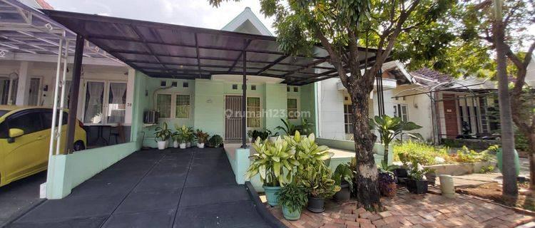Rumah Cantik 1 Lantai Di Cluster Meadow Green - Lippo Cikarang, Bekasi