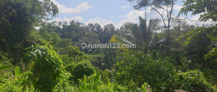 3078 sq m Freehold Land with Stunning Valley and Jungle Views 15 Minutes from Central Ubud