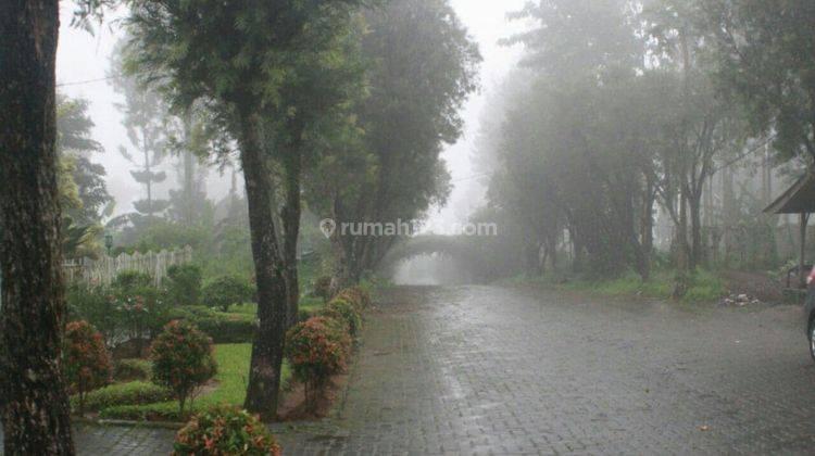 Baru! Rumah Villa di Puncak Bogor Cipanas 20 Menit ke Taman Bunga Nusantara 8